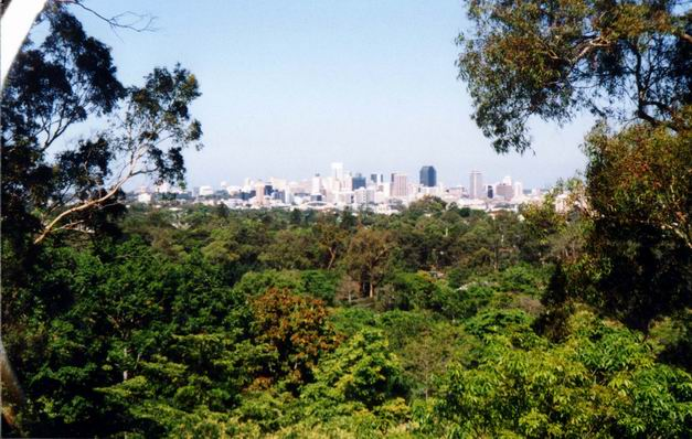 Panoramatic view of Brisbane.