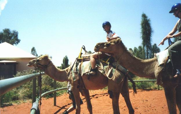 Ride on camels at Yulara resort.